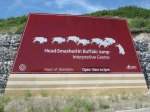 Head Smashed In Buffalo Jump 6436