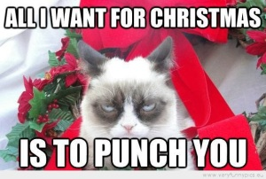 funny-picture-grumpy-cat-all-i-want-for-christmas-is-to-punch-you