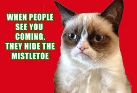 grumpy-cat-christmas-2