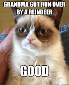 grumpycat2