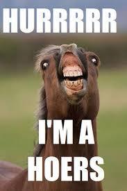 hurr horse